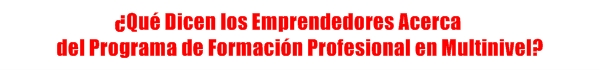 multinivel, network marketing, mercadeo en red, formacion, profesional, hacer, construir, negocio, exito, networker, empresario